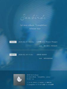 Seebirds-web-flyer